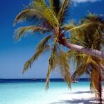 Spiagge bianche alle Maldive
