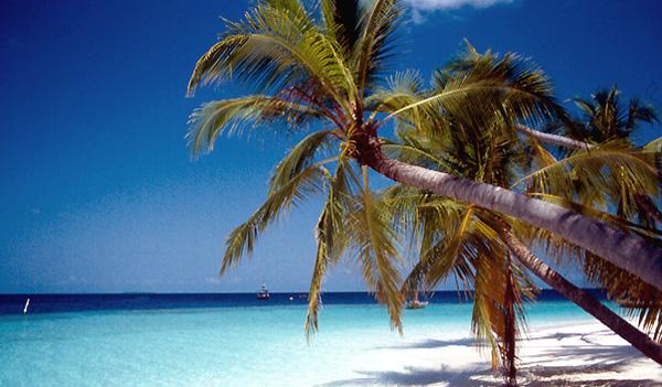 Spiagge bianche alleMaldive