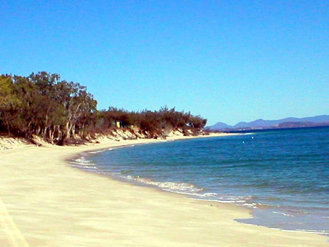 mare-australia-2008-21