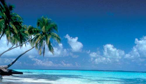 vacanze-natale-tropici-2008