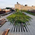 High Line a New York particolare