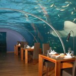 Jules Undersea Lodge Detalis