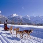 Vacanze sulla neve1