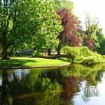 Parco di Amsterdam Vondelpark