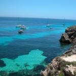 bue marino favignana   Cerca con Google
