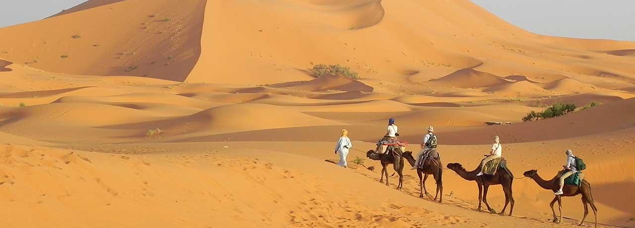 Viaggi nel deserto: un paesaggio da scoprire