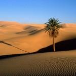 desert-egitto