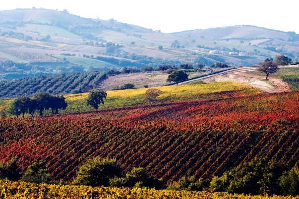 Destinazioni Toscane: le più amate dai turisti